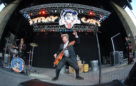 Stray Cats at Wolf Trap